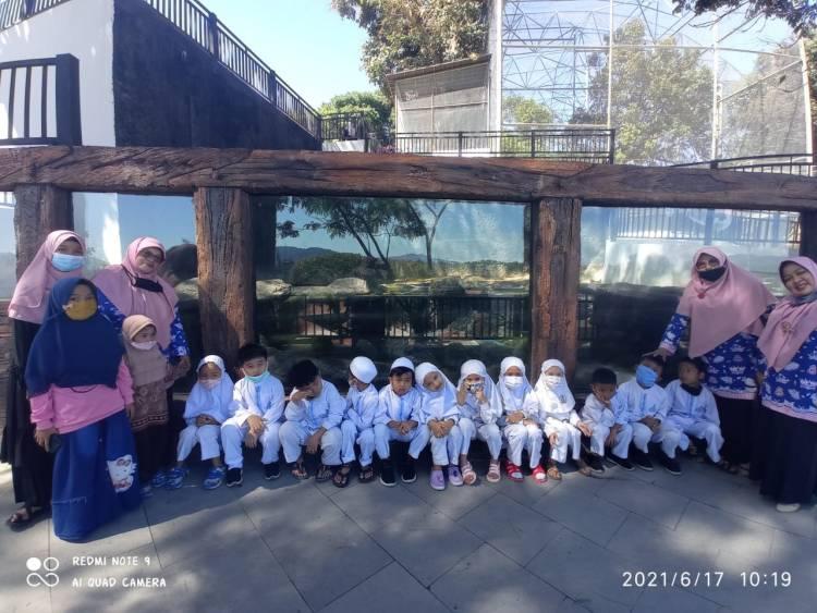 RA AL-Ikhlas DW Kemenag Perpisahan di Kebun Binatang
